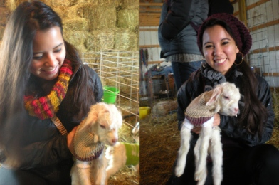Helen and Nidia carrying newborn baby goats