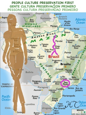 Xingu River in relation to Sao Paulo highlighted in pink