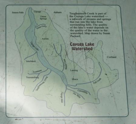 Cayuga Lake Watershed; Photo Courtesy David Arellanes