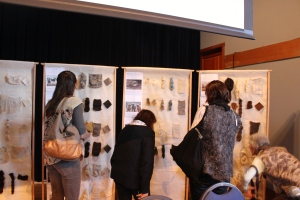 Diversity of Wool Display, Fibershed Symposium 2014
