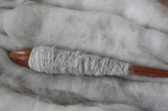 Angora fibers on support spindle, 2015