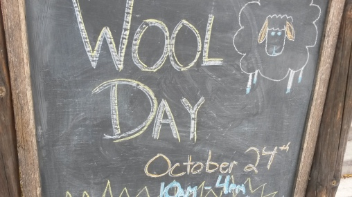Wool Day! 2015