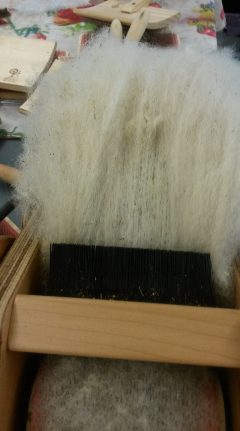 Carding Finnsheep Wool, 2015