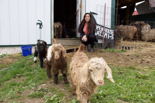 Nidia with Angora Goats, May 2016